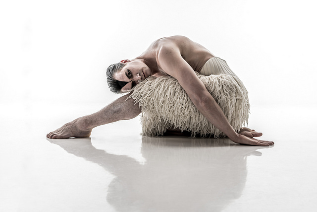 MATTHEW BOURNE'S SWAN LAKE. Max Westwell as 'The Swan'.Photo by Johan Persson