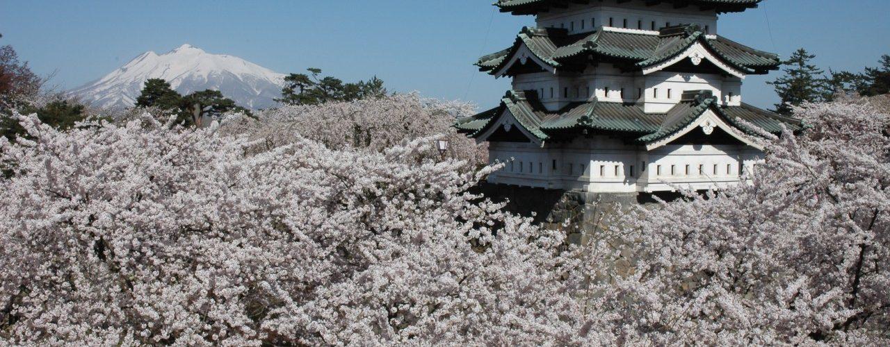 Hirosaki Cherry Blossom Festival ©Hirosaki City/©JNTO
