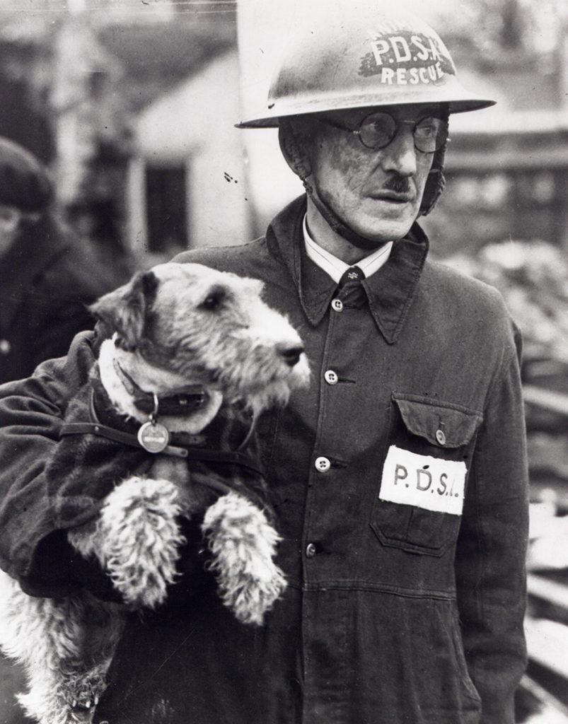 Animal hero, Beauty and Bill Barnet