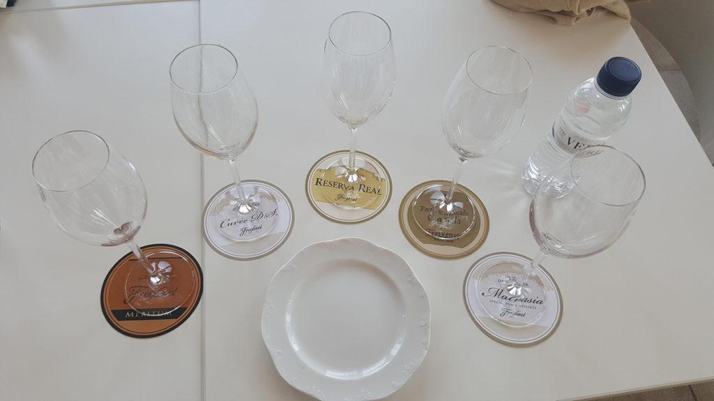 Tasting table at Freixenet