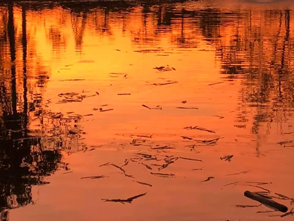 Thailand: Sunset on the Lake