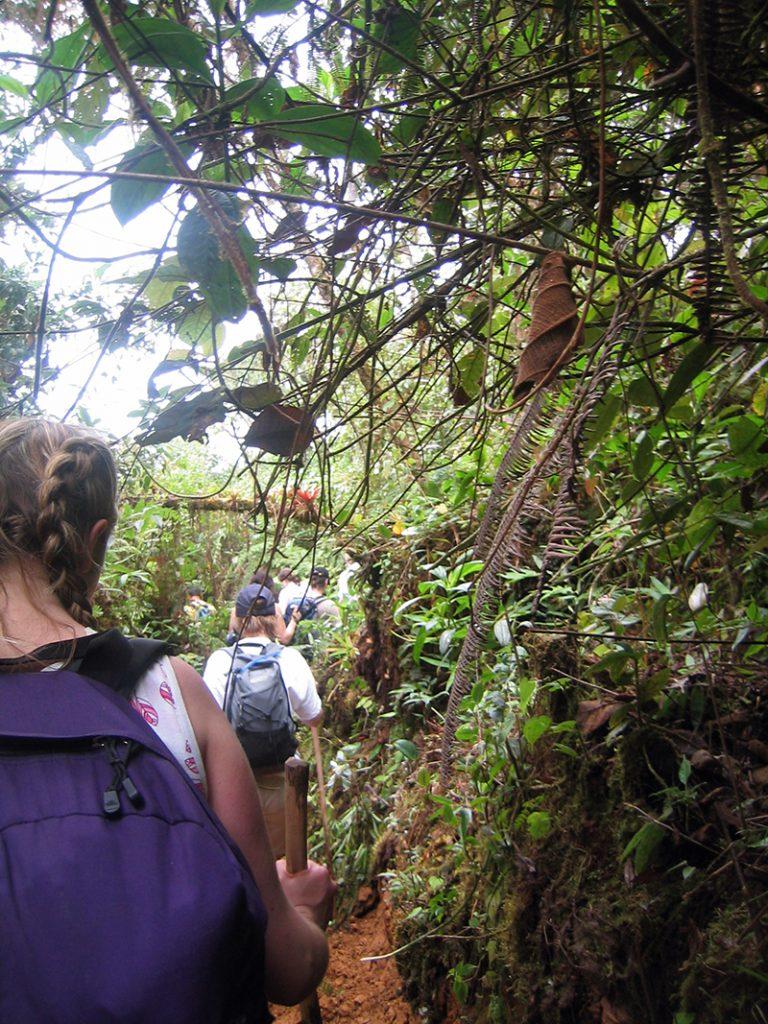 Charity trek for National Deaf Children's Society in Costa Rica