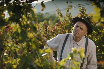 Joe Pantoliano in From the Vine