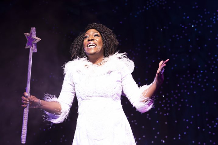 Hayley Ria Christian as Fairy Godmother. Photo: Phil Tragen