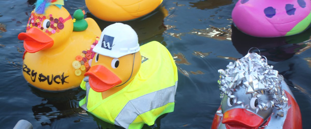 Quays Duck Race