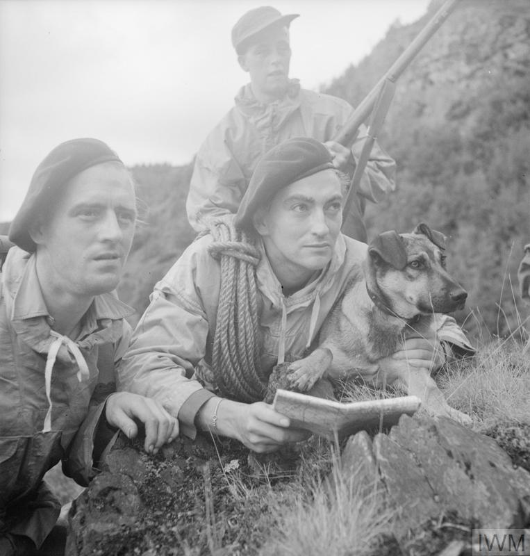 THE BRITISH ARMY IN BRITAIN, 1939-1945 (H 32108) Commando troops, members of a first party to reach the cliff top, with their dog during training exercises in mountain terrain, probably in Scotland, 20 August 1943. Copyright: © IWM.