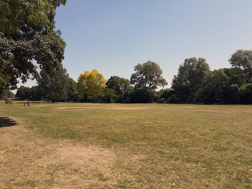 Open space in Longford Park